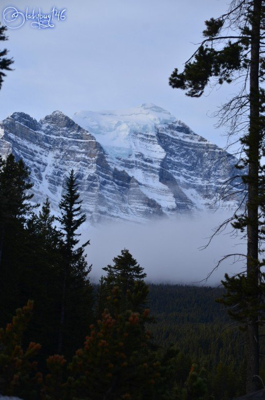 bow_valley_parkway6.jpg