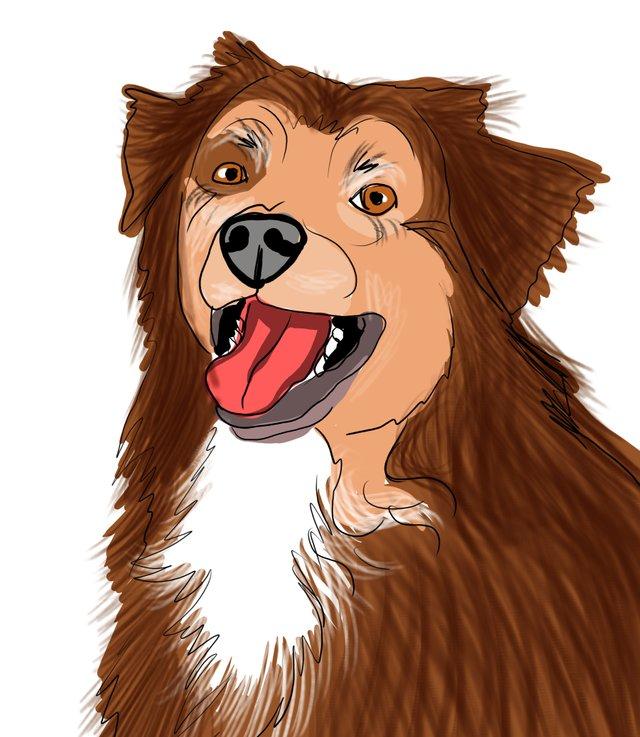 dog happy (483).jpg