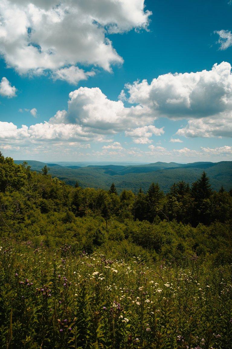Cranberry Wilderness Backpack Weber35.jpg