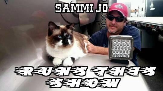 Boss Kitty Sammi Jo Runs Show.jpg