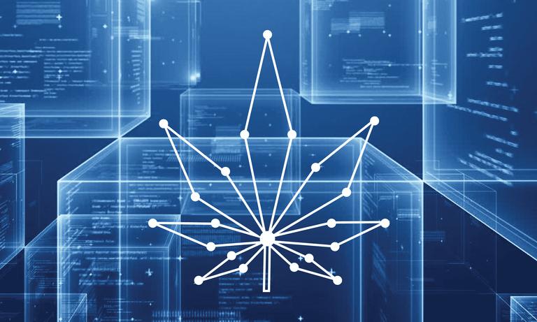 blockchaincannabisfeaturedimage.png