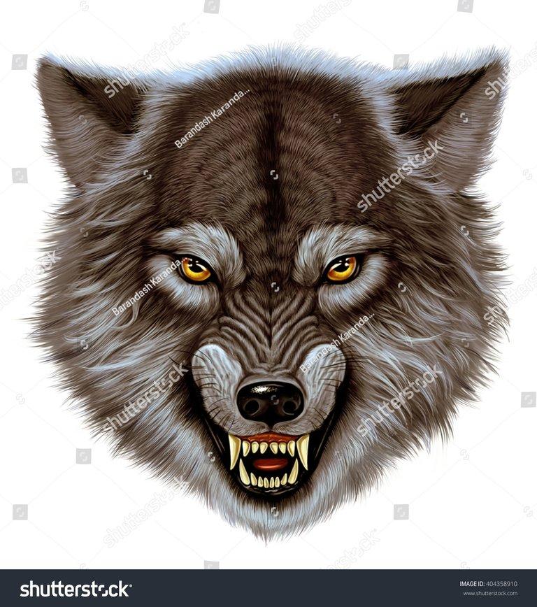 https://i3.wp.com/image.shutterstock.com/z/stock-photo-angry-wolf-head-white-background-404358910.jpg