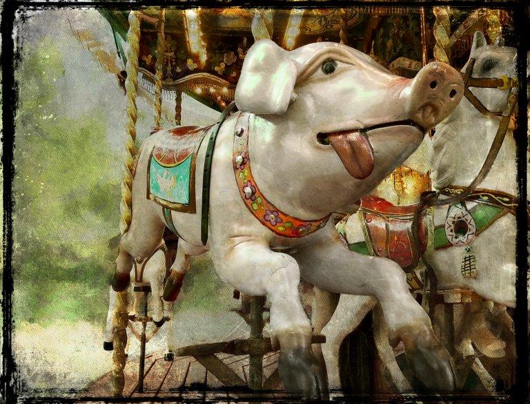 pig_at_the_fairground_2.jpg