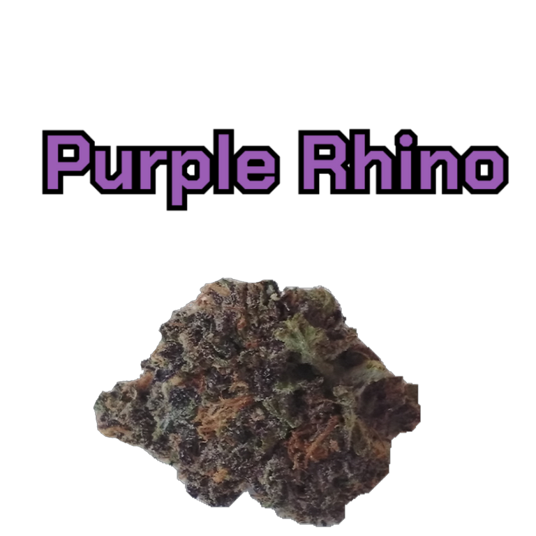 purple_rhino_with_name_.png