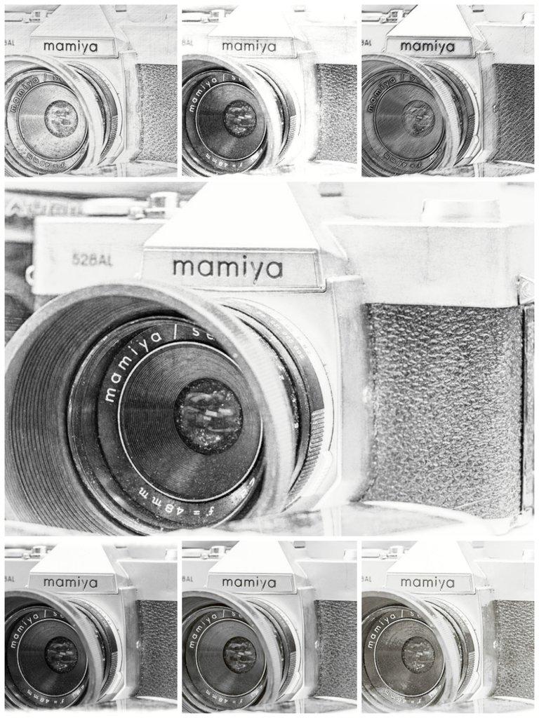 collage_20210403_233625.jpg