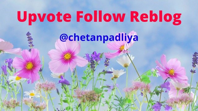 Upvote Follow Reblog.jpg