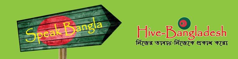 Hive-Bangladesh Banner.jpg