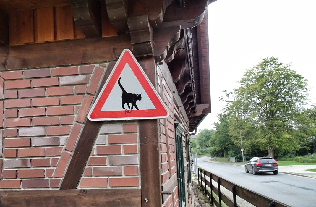 Warning for the cat.