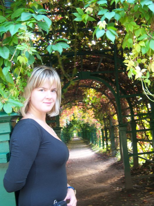 The alley is covered with virgin grapes. And me))