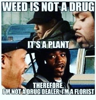 quality-meme-right-there-weed-cannabis-marijuana-smoke-florist-plant-bud-nug.jpg