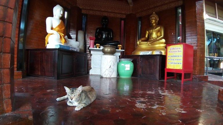 dusit_temples_bangkok_oct_2020_212.jpg