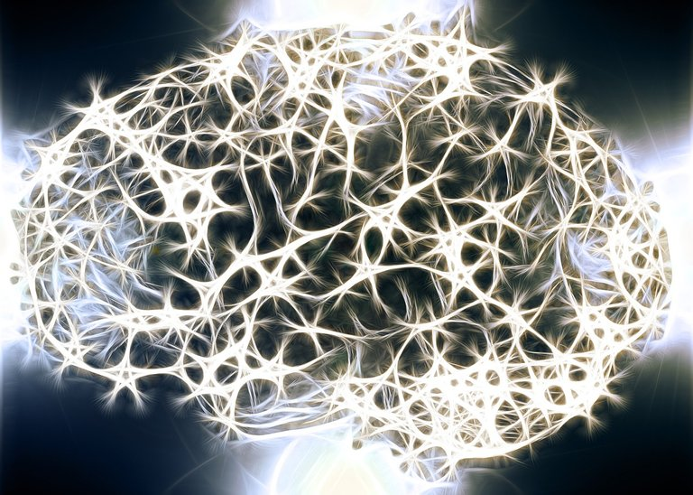 Gehirn Nervennetz