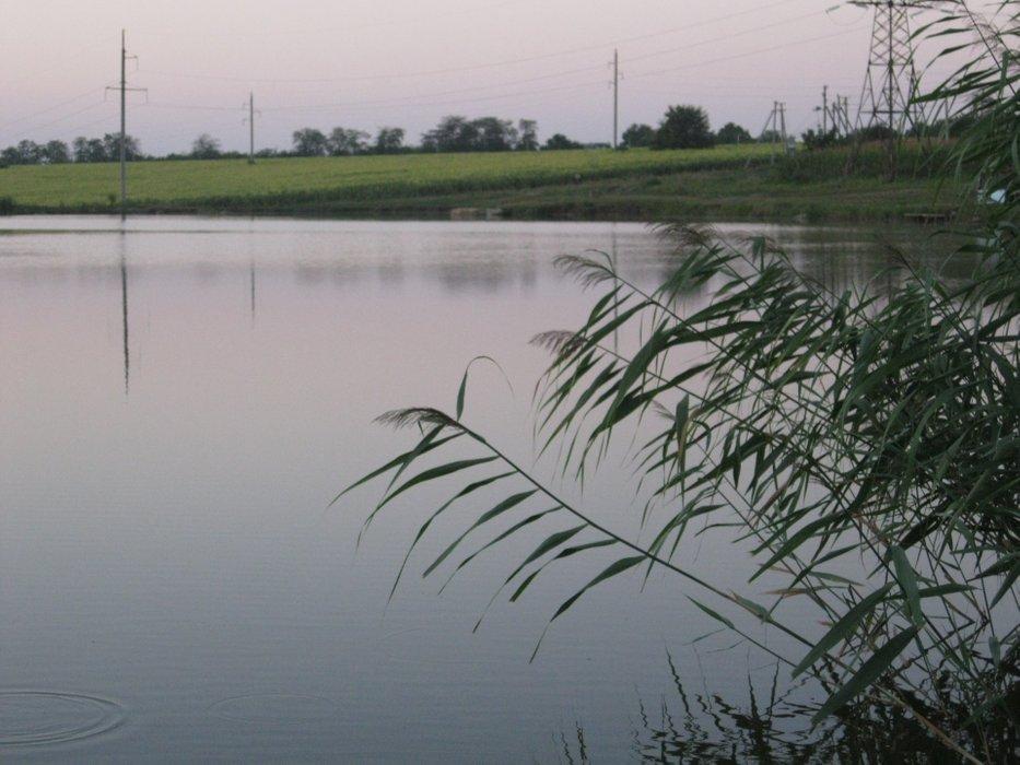 Fishing in the village Kuyalnik