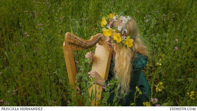 Priscilla Hernandez harpsicle - by priscilla Hernandez (yidneth.com).jpg