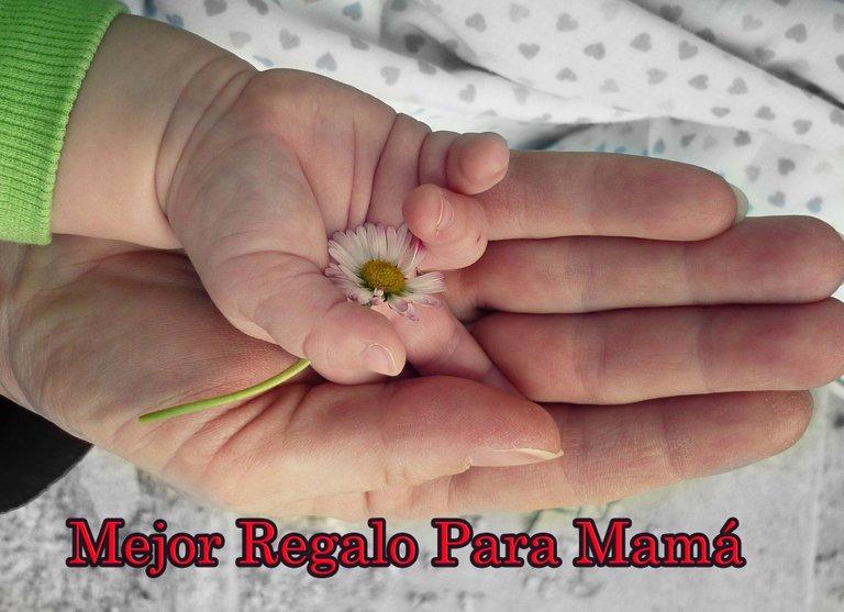 hands-105455_19.jpg
