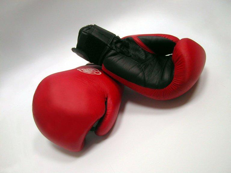 boxing-gloves-and-dumbells-1-1531474.jpg