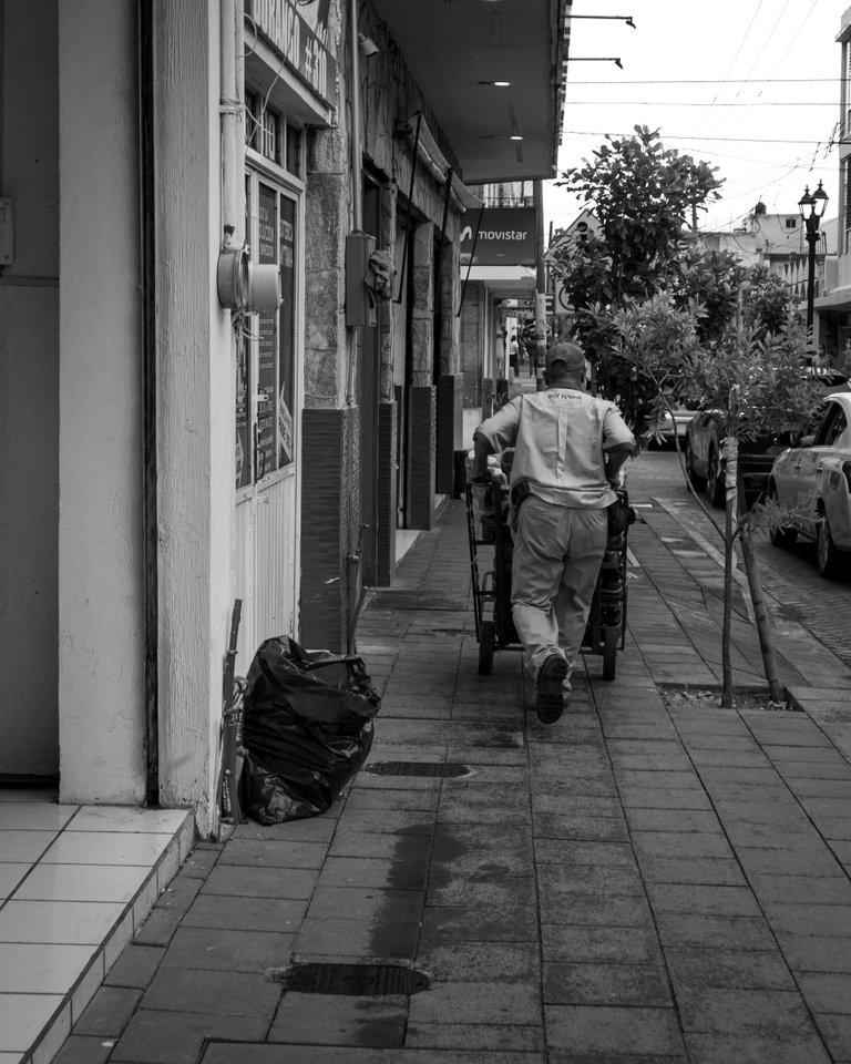Primeras_fotos_camara_nueva_canon_m50-2.jpg