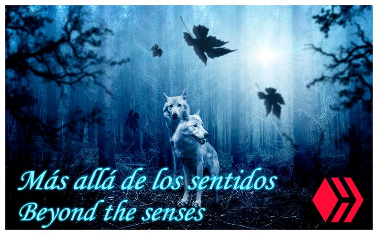 beyond the senses.png