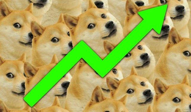 doge_power02.jpg