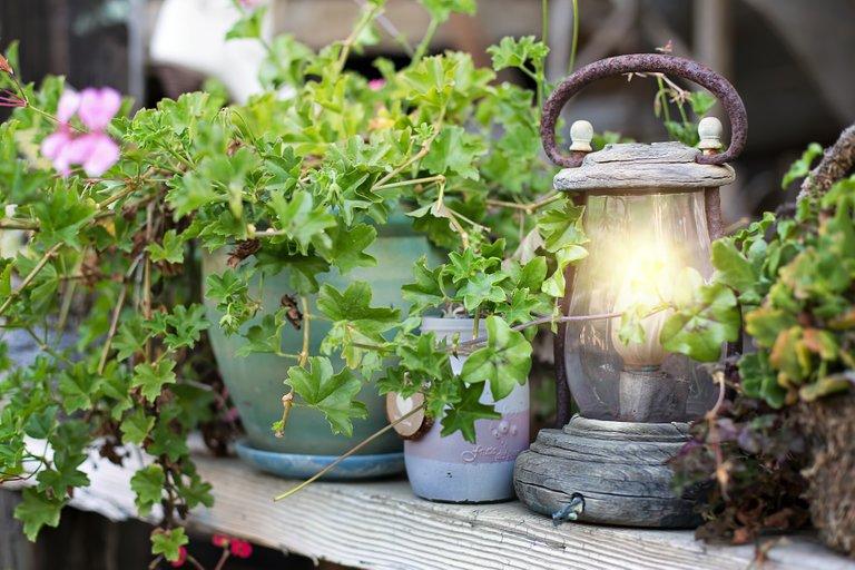 lantern4353499_1920.jpg
