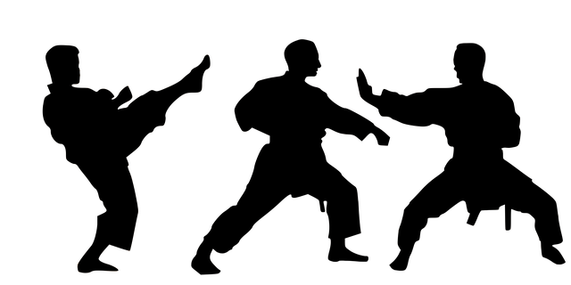 karate4002261_640.png