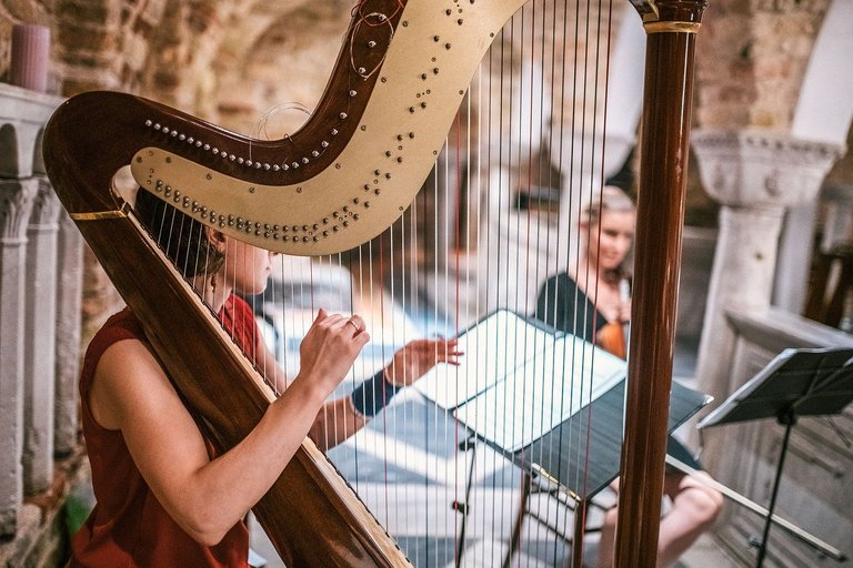 harp3961060_1280.jpg