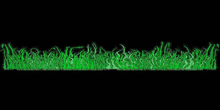 grass.png
