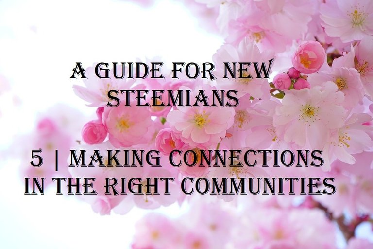 a guide for new steemians 5 making connections in the right communities.jpg