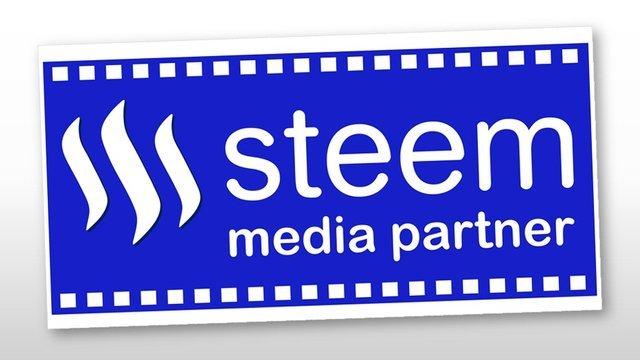 steem media partner