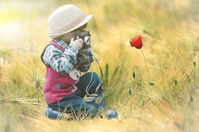 flower-4339932_960_720 Blume Kind Liebe Mohn.jpg