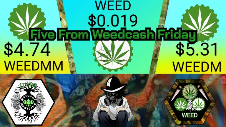 torum_title_card_five_from_weedcash_friday_hive_version_.jpg