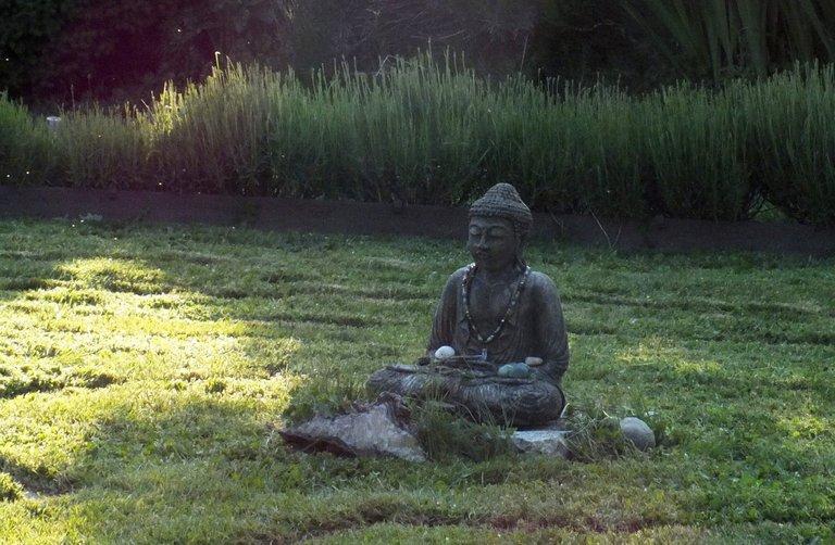 0881-Buddha.jpg