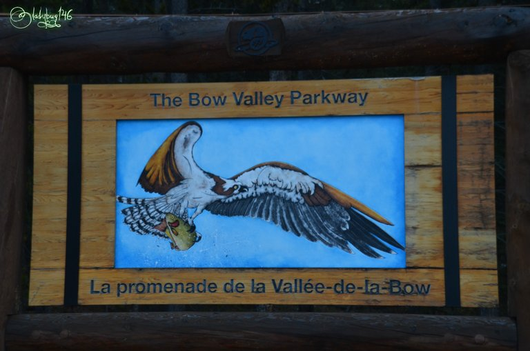 park art2.jpg