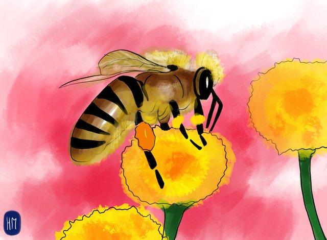 Bee (357).jpg