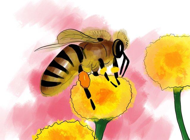 Bee (355).jpg