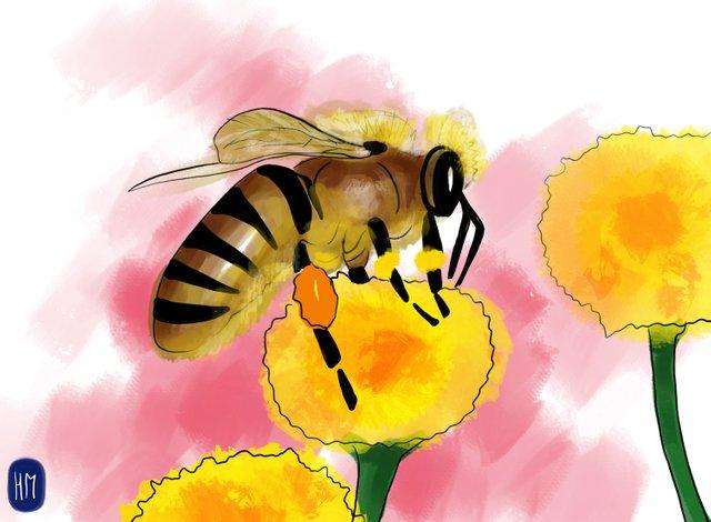 Bee (356).jpg