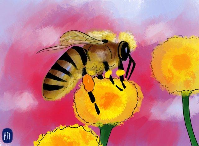 Bee (345).jpg