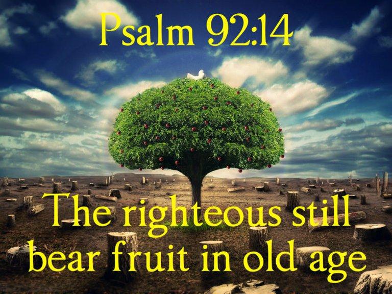 psalm-92.14.jpg