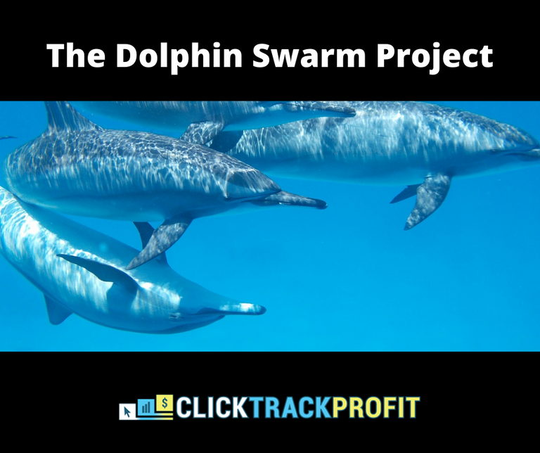 The Dolphin Swarm Project.png