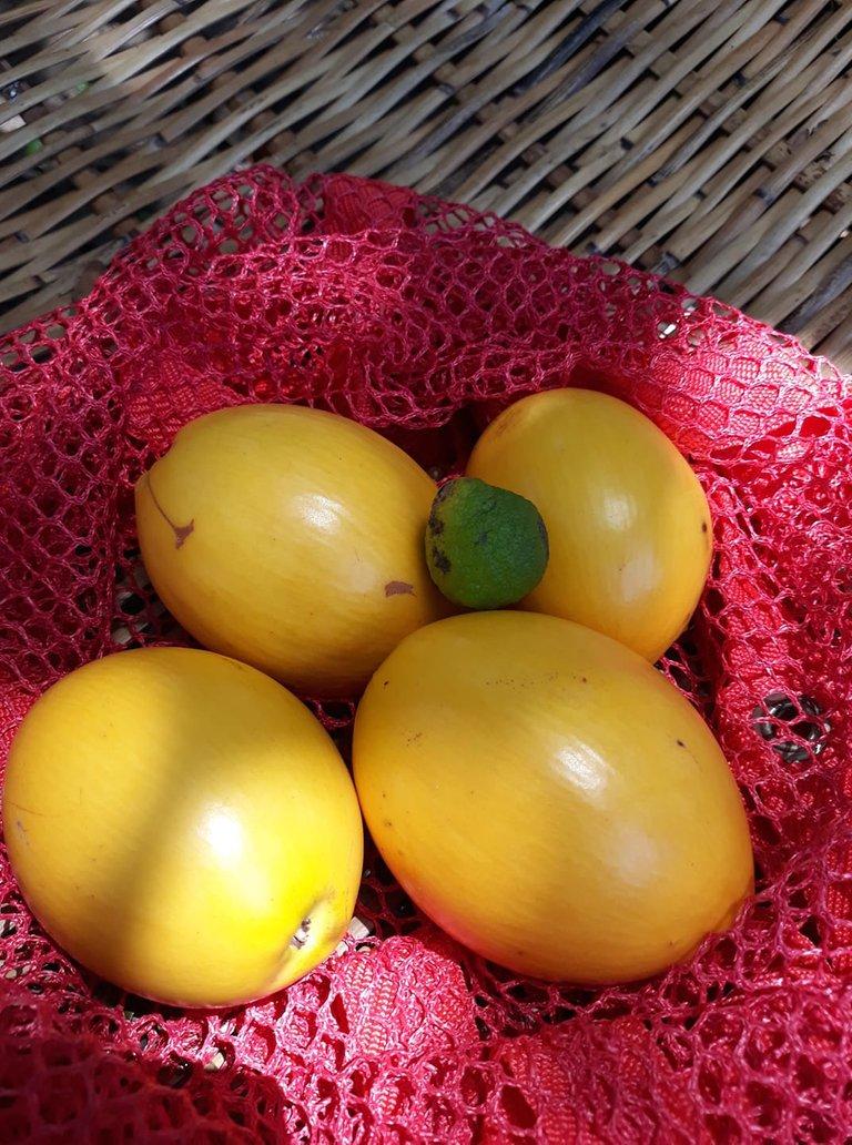 fruits brazillian starapples.jpg