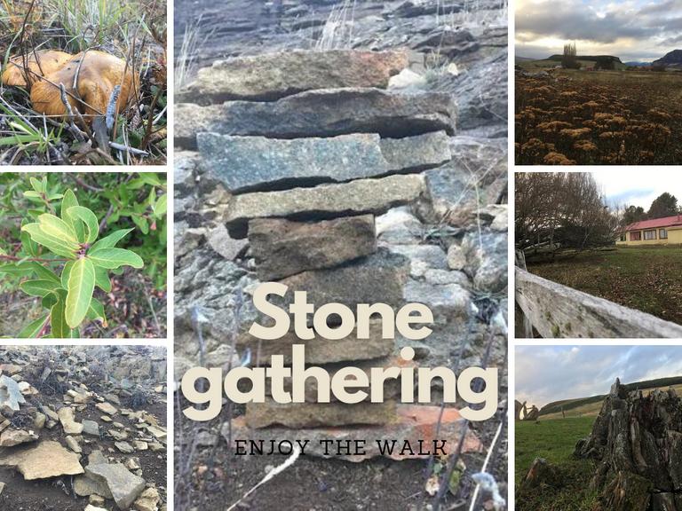 stone_gathering.png