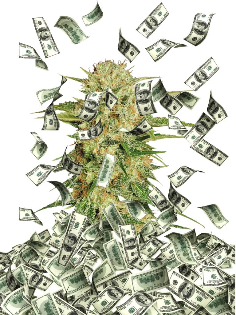 cannabis_market.png