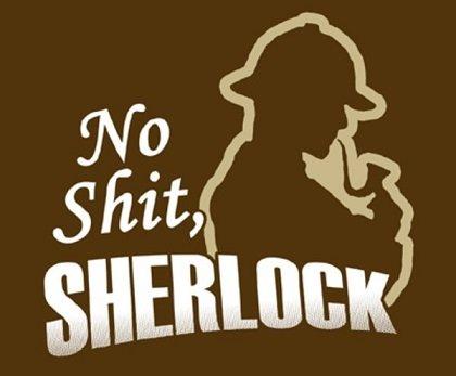 no_shit_sherlock.jpg