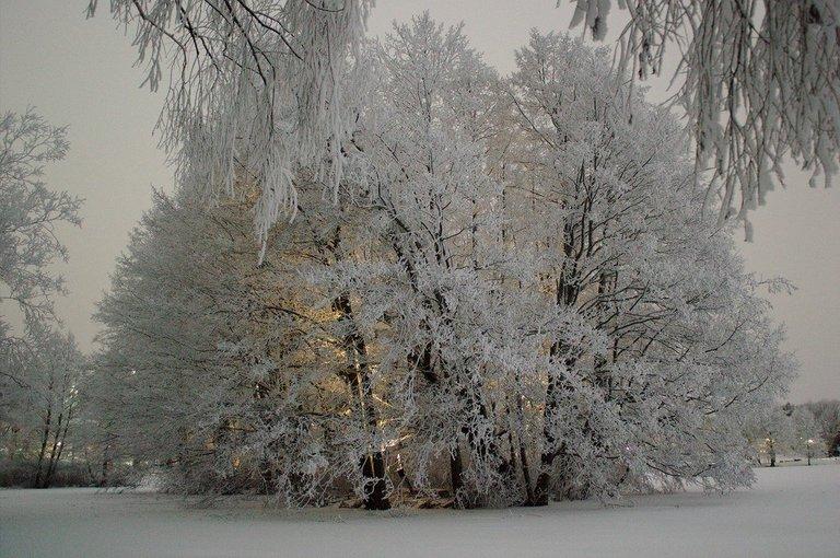 Snowy illuminated island