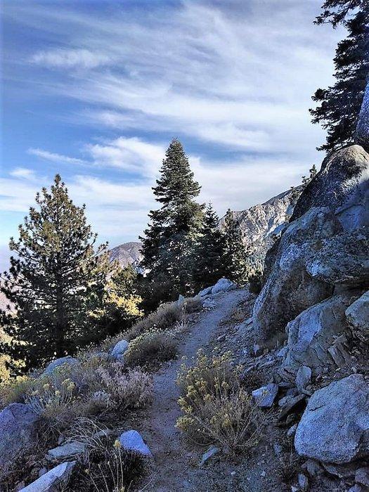trail 2 (2).jpg