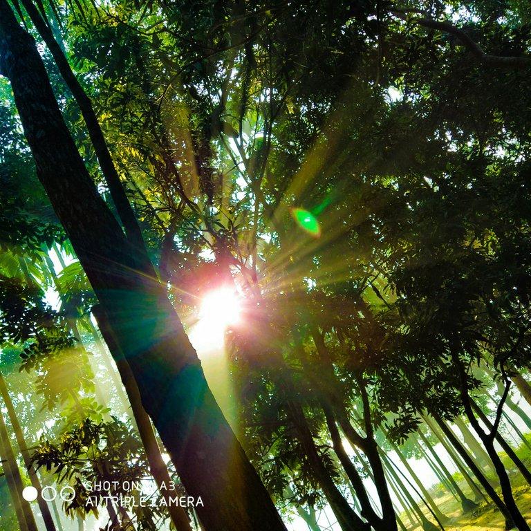 PicsArt_11-27-05.54.54.jpg