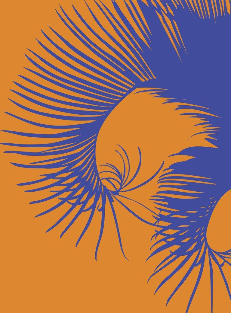 Curvas-Naturales-color.jpg