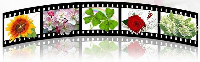 filmstrip-2208127_1280.jpg