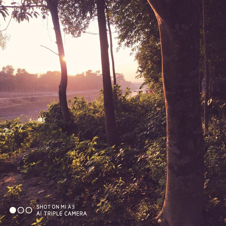PicsArt_11-28-09.42.52.jpg