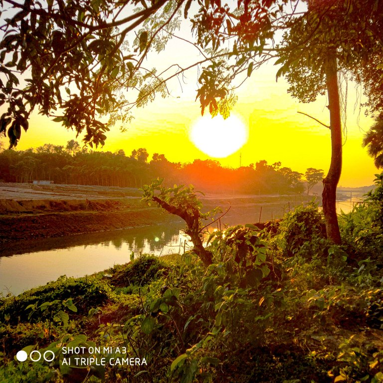 PicsArt_11-27-05.12.11.jpg
